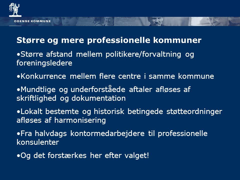 Større og mere professionelle kommuner