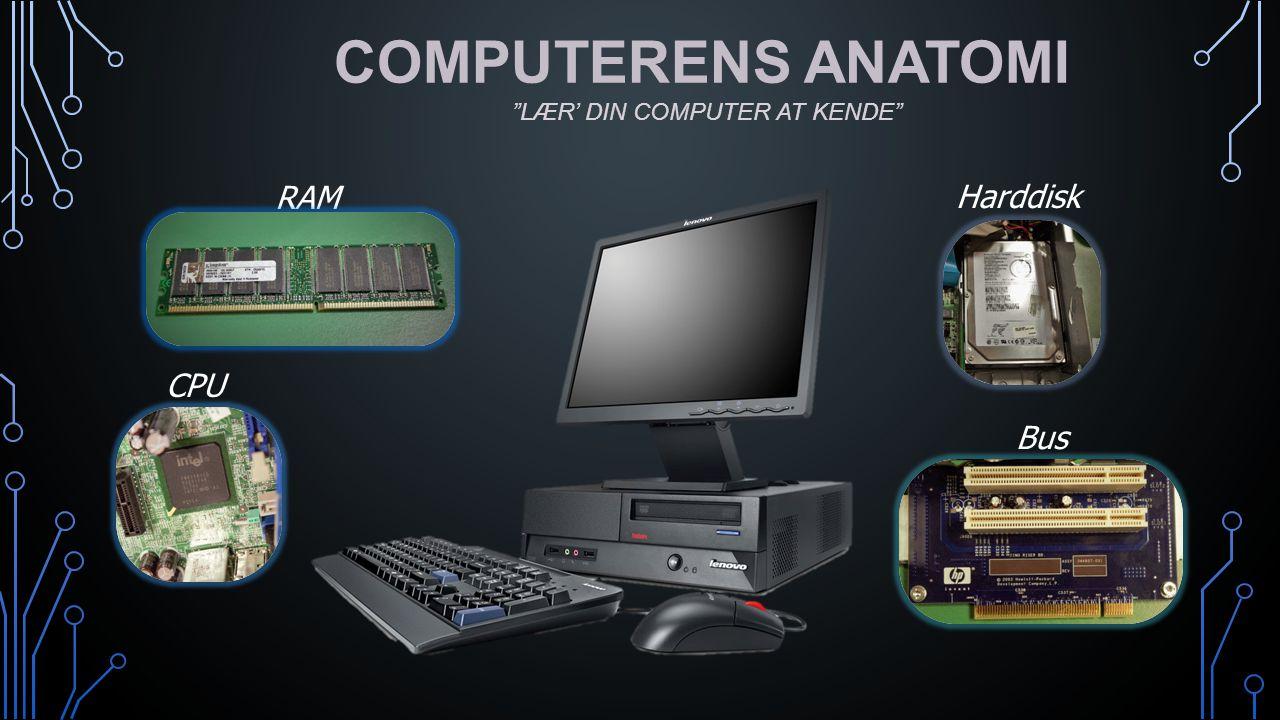 COMPUTERENS ANATOMI LÆR' DIN COMPUTER AT KENDE RAM Harddisk CPU Bus