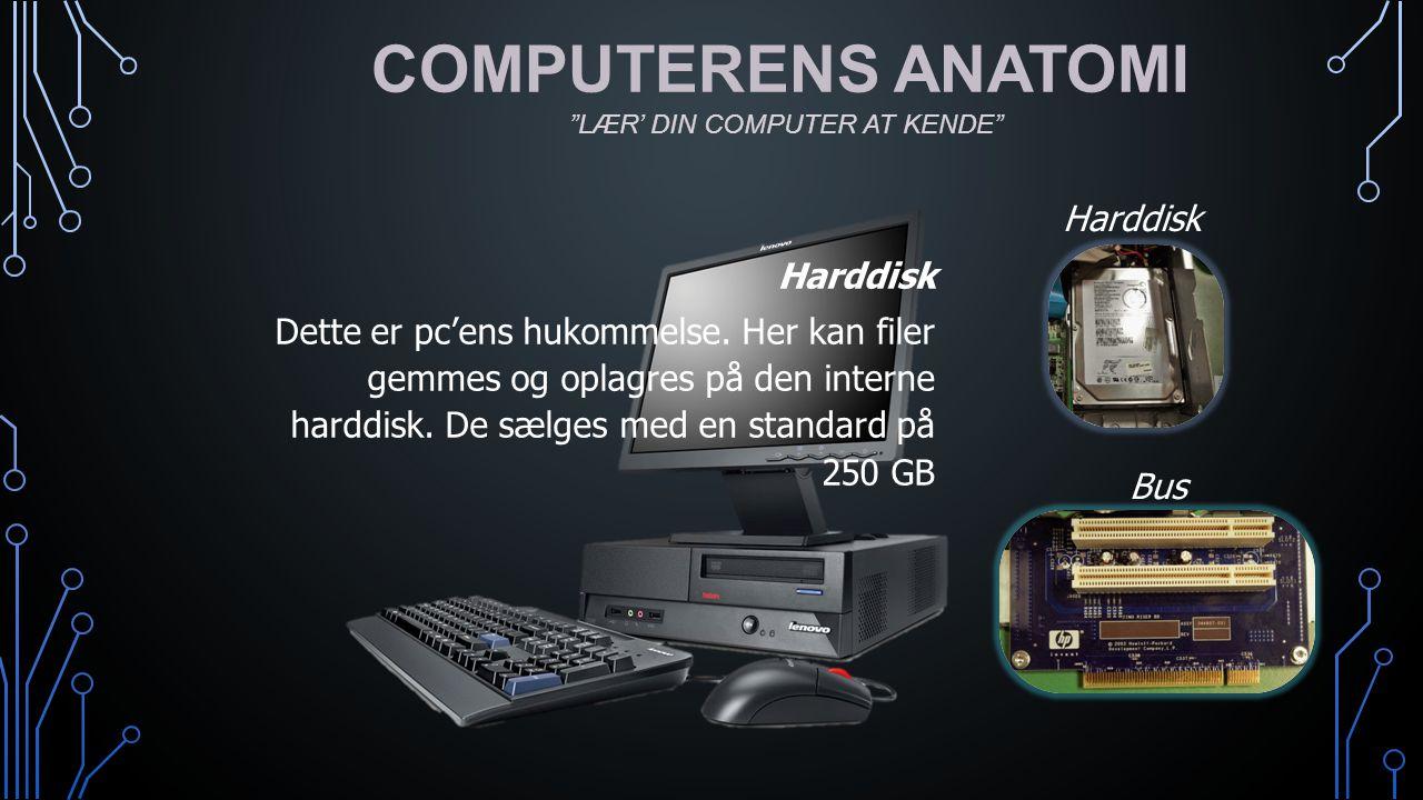 COMPUTERENS ANATOMI Harddisk Harddisk