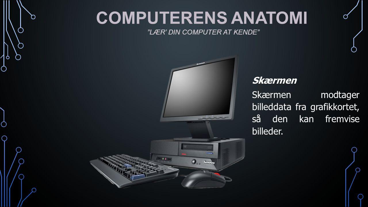 COMPUTERENS ANATOMI Skærmen