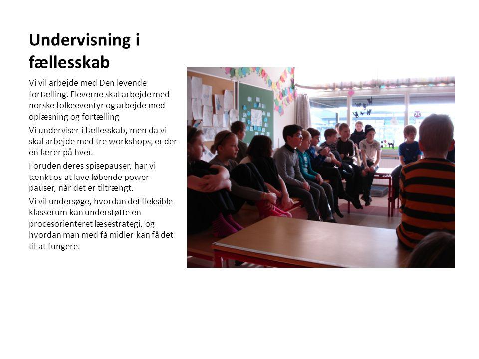 Undervisning i fællesskab