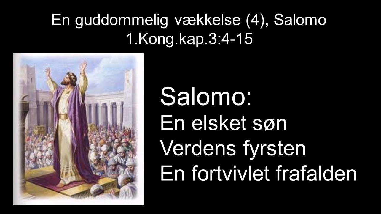 En guddommelig vækkelse (4), Salomo