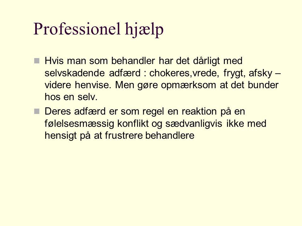 Professionel hjælp