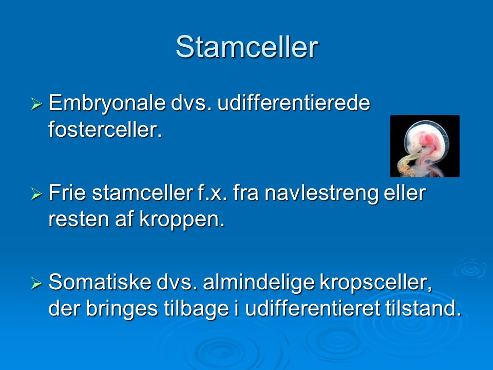 Stamceller Embryonale dvs. udifferentierede fosterceller.