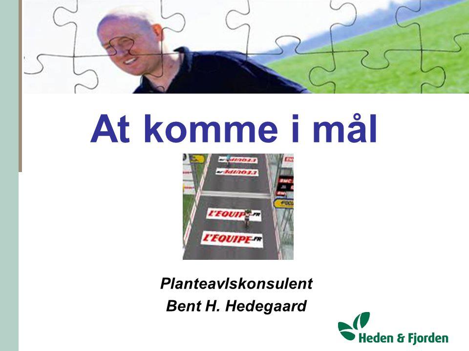 Planteavlskonsulent Bent H. Hedegaard
