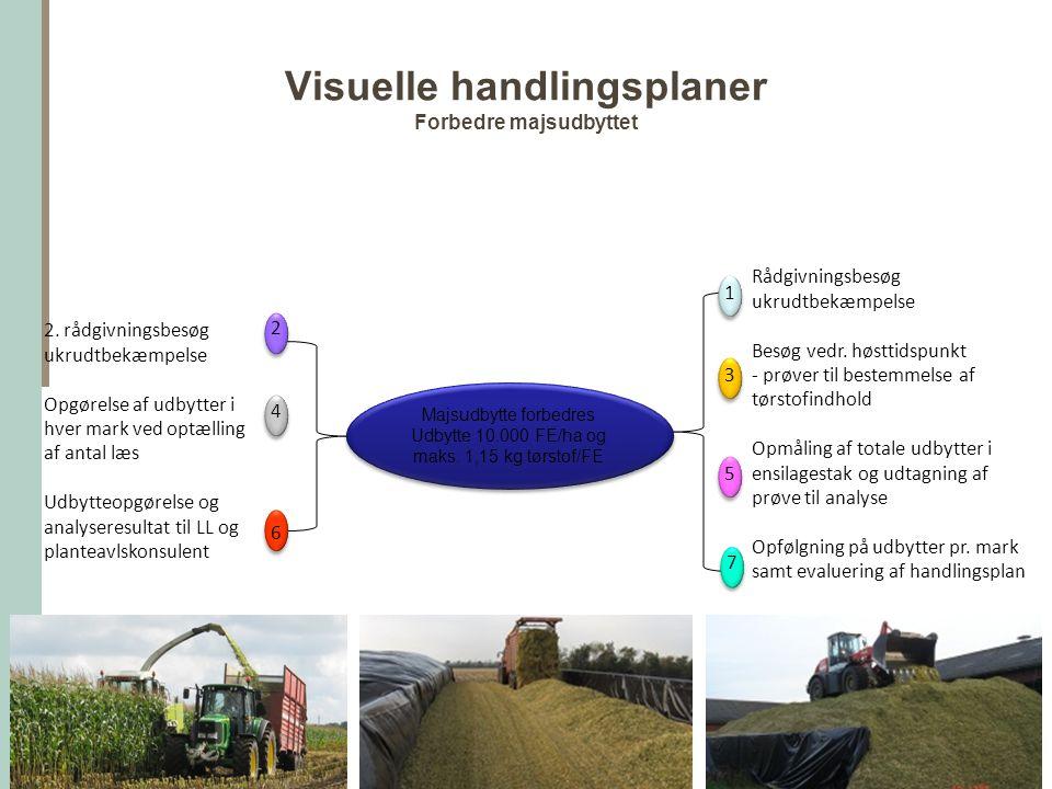 Visuelle handlingsplaner Forbedre majsudbyttet