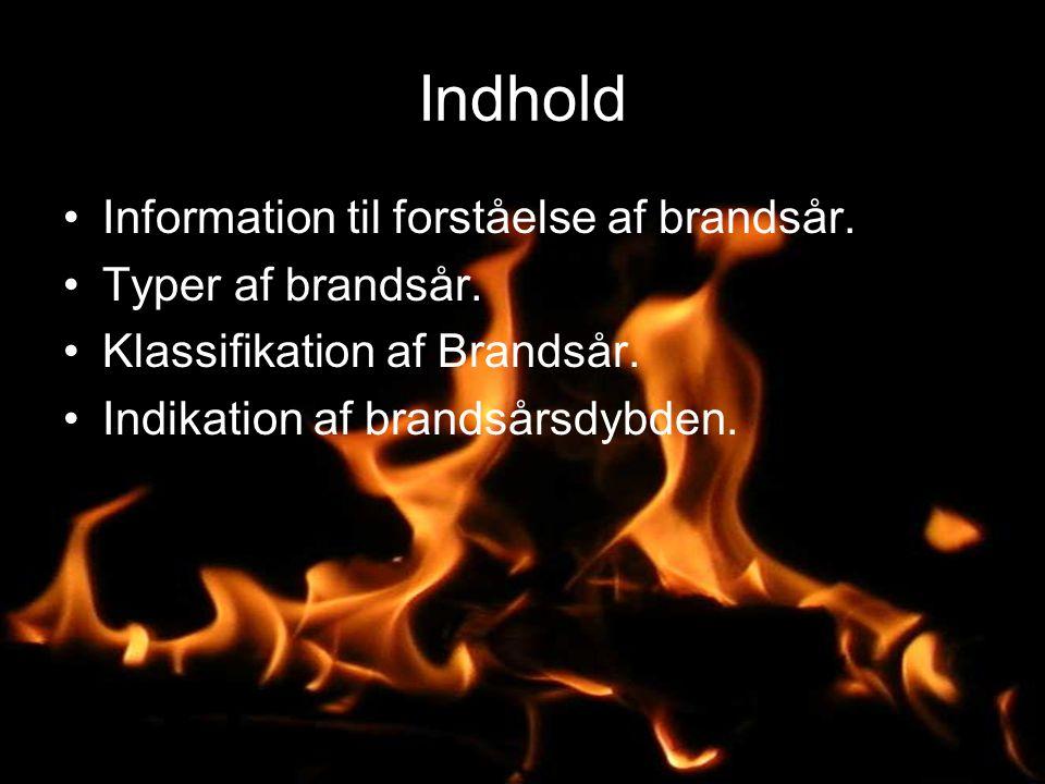 Indhold Information til forståelse af brandsår. Typer af brandsår.