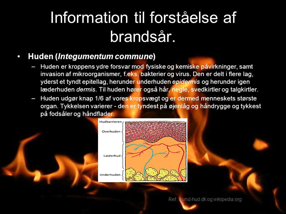 Information til forståelse af brandsår.