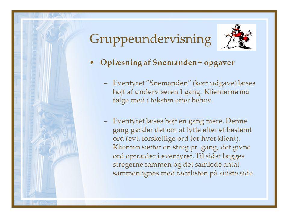 Gruppeundervisning Oplæsning af Snemanden + opgaver