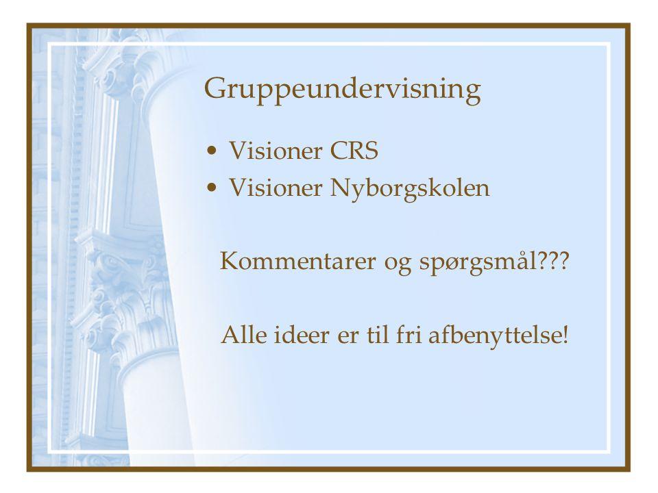 Gruppeundervisning Visioner CRS Visioner Nyborgskolen