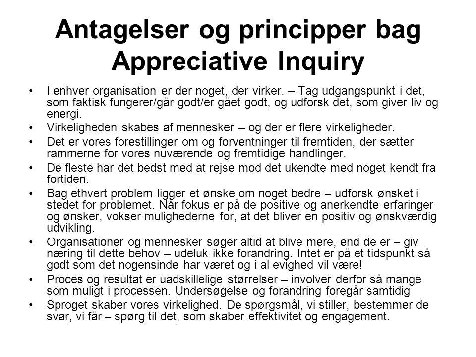 Antagelser og principper bag Appreciative Inquiry
