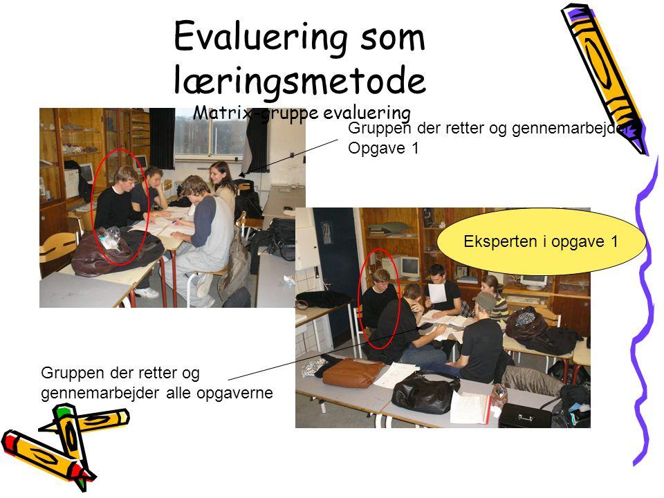 Evaluering som læringsmetode Matrix-gruppe evaluering