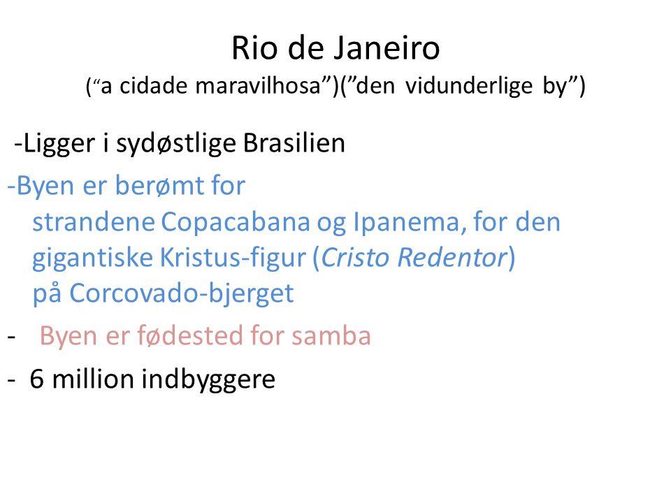 Rio de Janeiro ( a cidade maravilhosa )( den vidunderlige by )