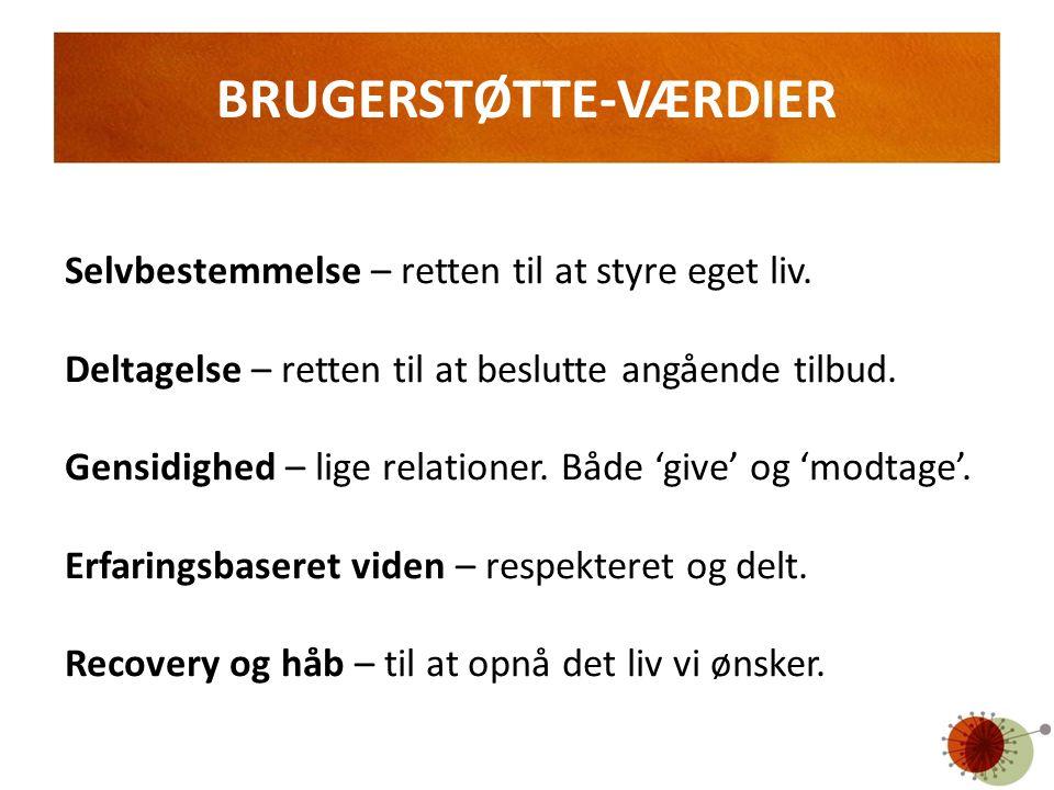 BRUGERSTØTTE-VÆRDIER