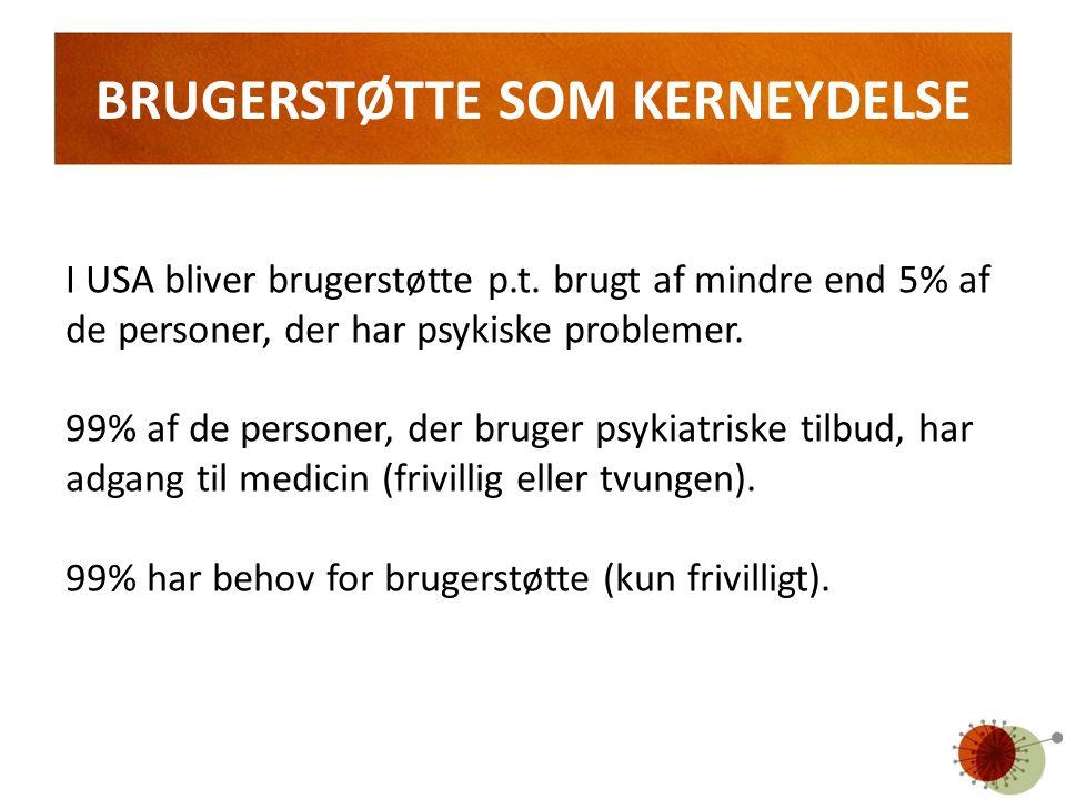BRUGERSTØTTE SOM KERNEYDELSE