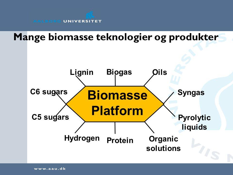 Mange biomasse teknologier og produkter