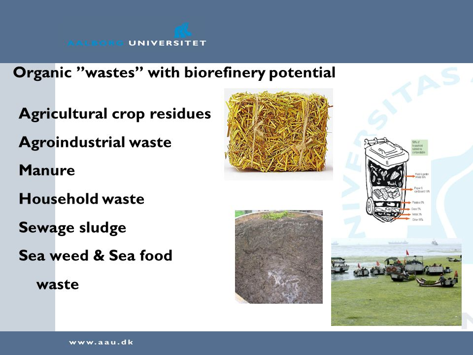 Organic wastes with biorefinery potential