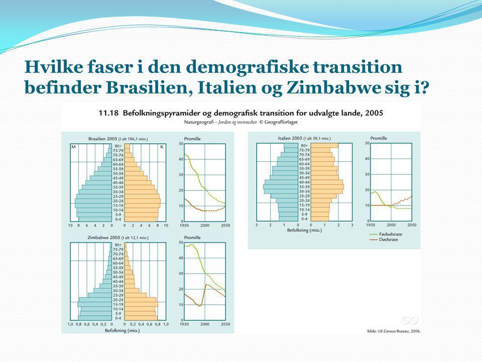 Hvilke faser i den demografiske transition befinder Brasilien, Italien og Zimbabwe sig i