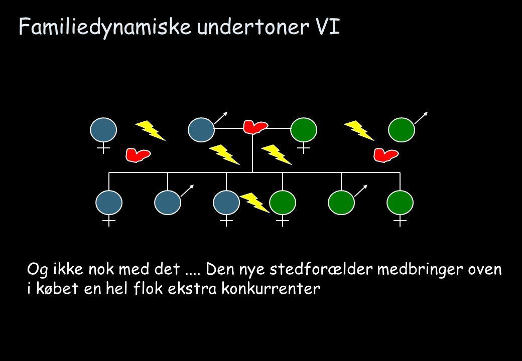 Familiedynamiske undertoner VI