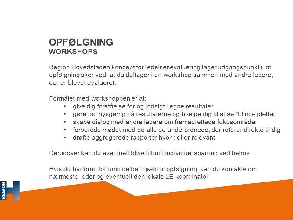 OPFØLGNING WORKSHOPS
