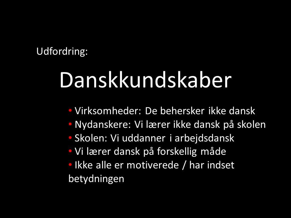 Danskkundskaber Udfordring: Virksomheder: De behersker ikke dansk