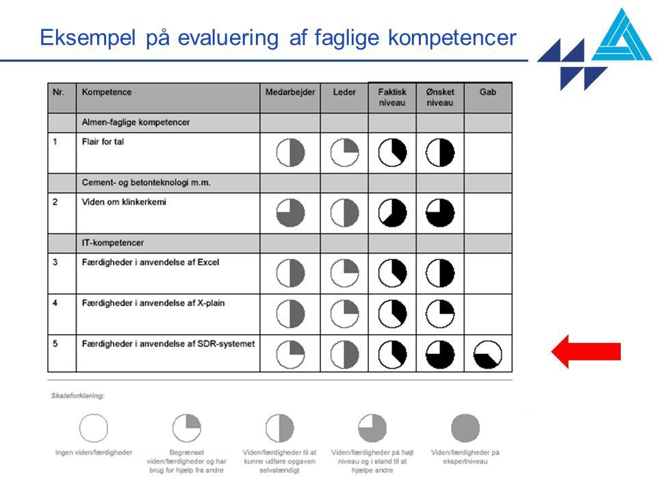 Eksempel på evaluering af faglige kompetencer