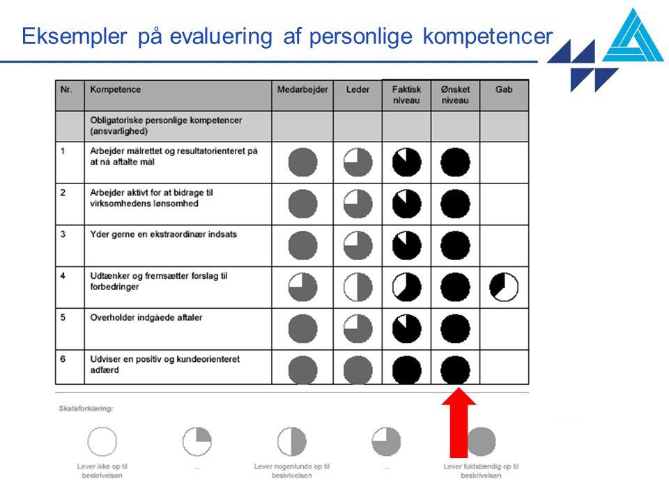 Eksempler på evaluering af personlige kompetencer