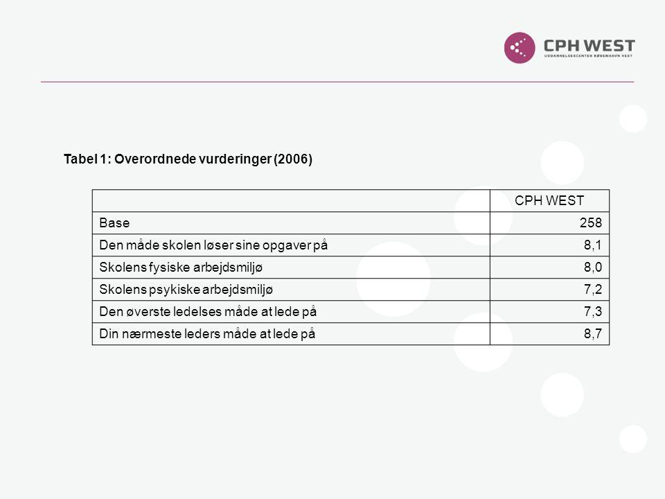 Tabel 1: Overordnede vurderinger (2006)
