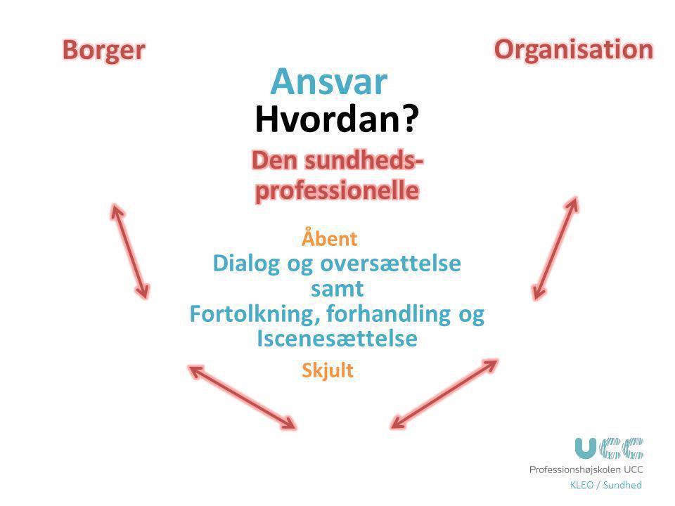 Ansvar Hvordan Borger Organisation Den sundheds-professionelle