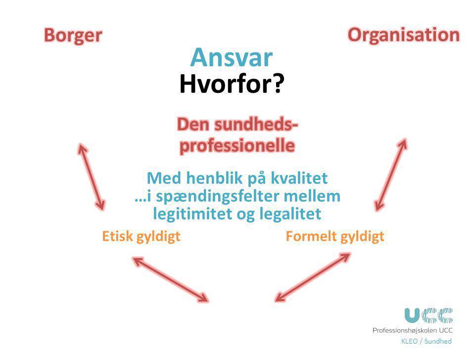 Ansvar Hvorfor Borger Organisation Den sundheds-professionelle