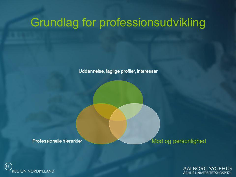 Grundlag for professionsudvikling