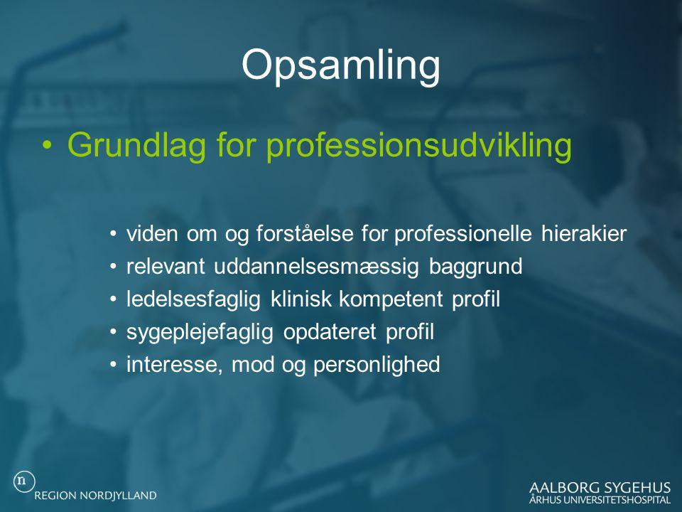 Opsamling Grundlag for professionsudvikling