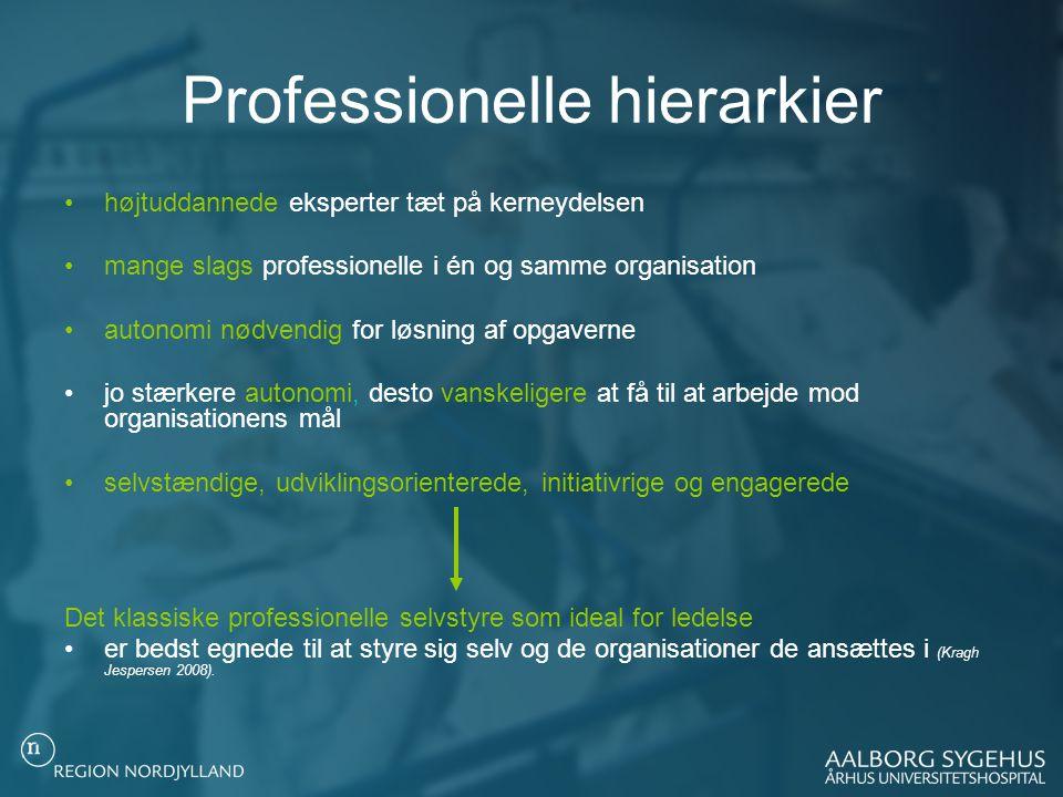 Professionelle hierarkier