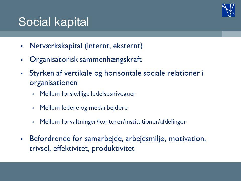Social kapital Netværkskapital (internt, eksternt)