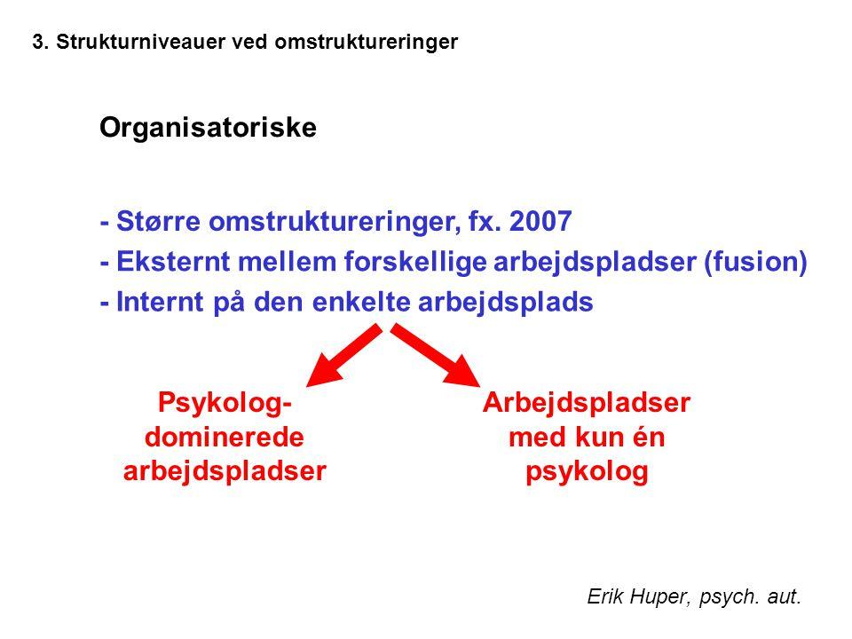 3. Strukturniveauer ved omstruktureringer