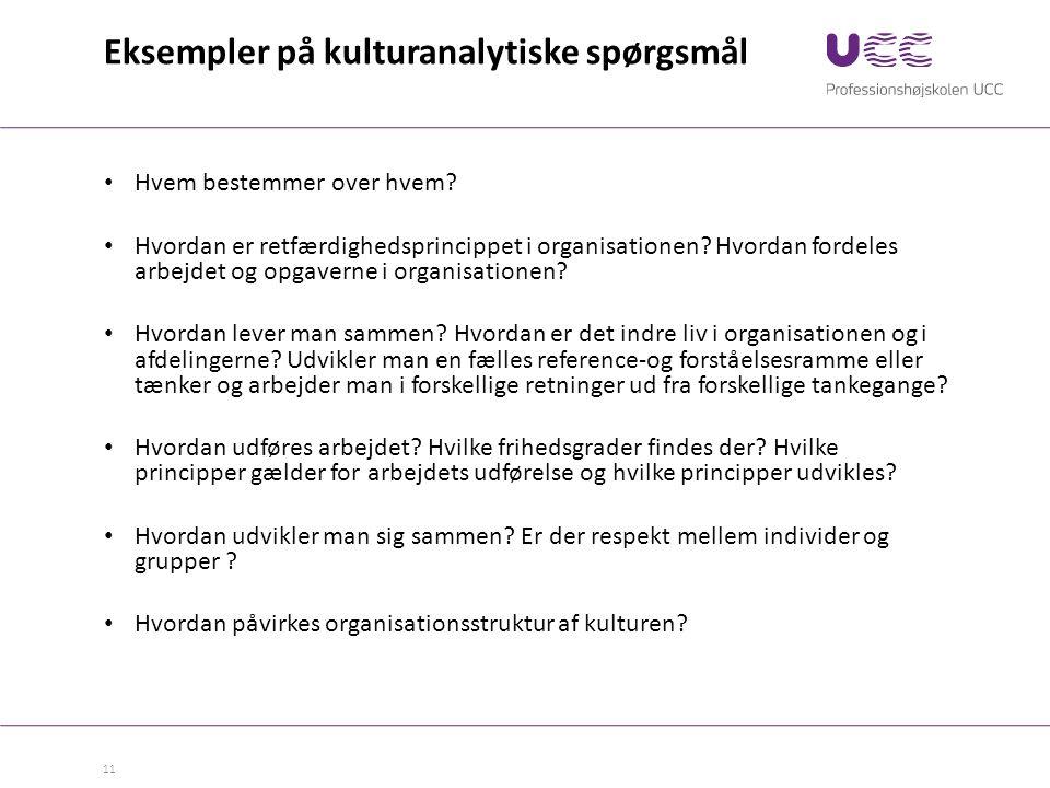 Eksempler på kulturanalytiske spørgsmål