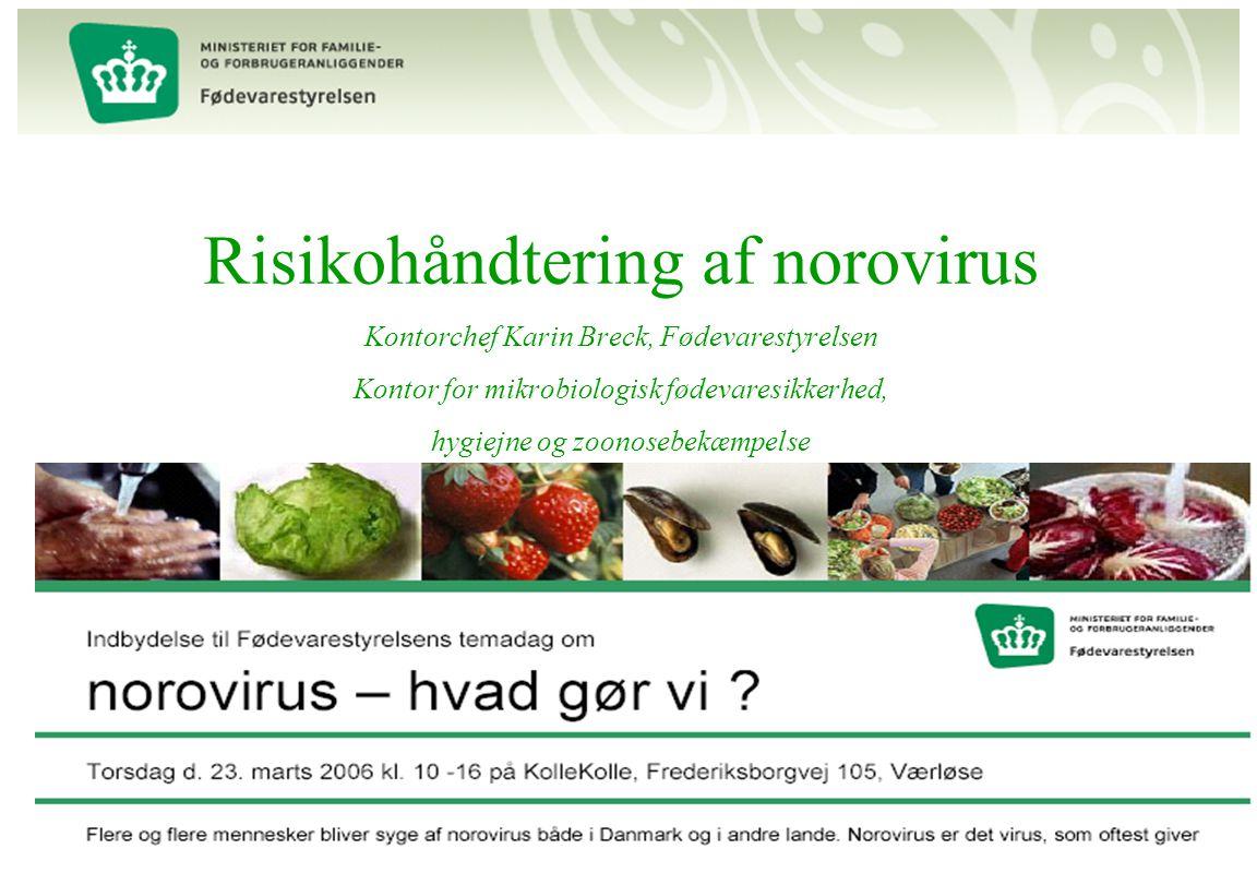 Risikohåndtering af norovirus