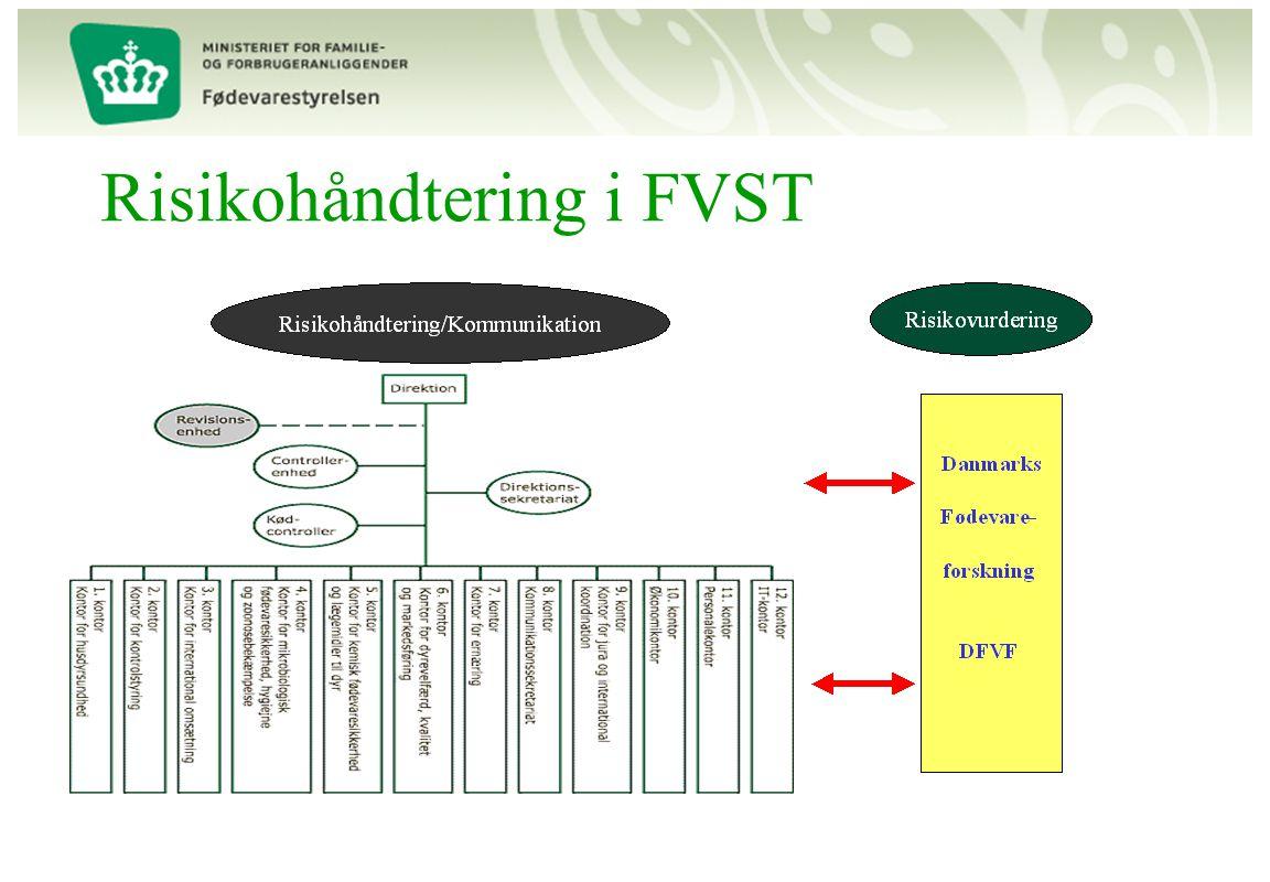 Risikohåndtering i FVST