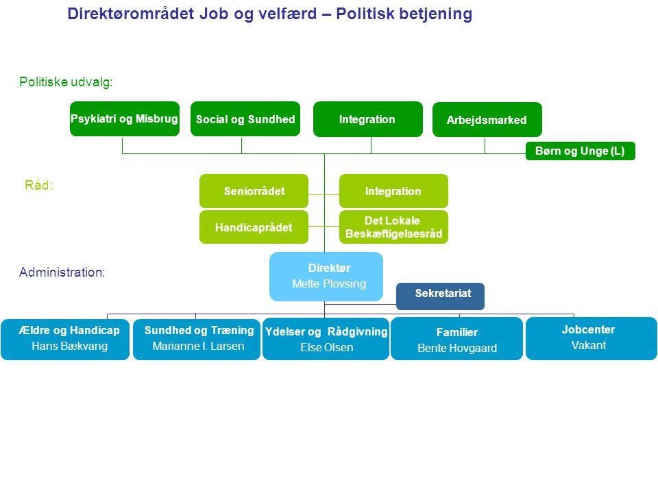 Direktørområdet Job og velfærd – Politisk betjening