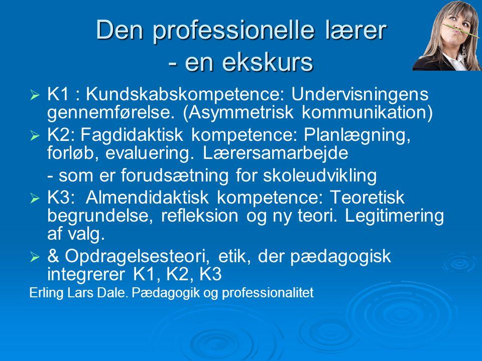 Den professionelle lærer - en ekskurs