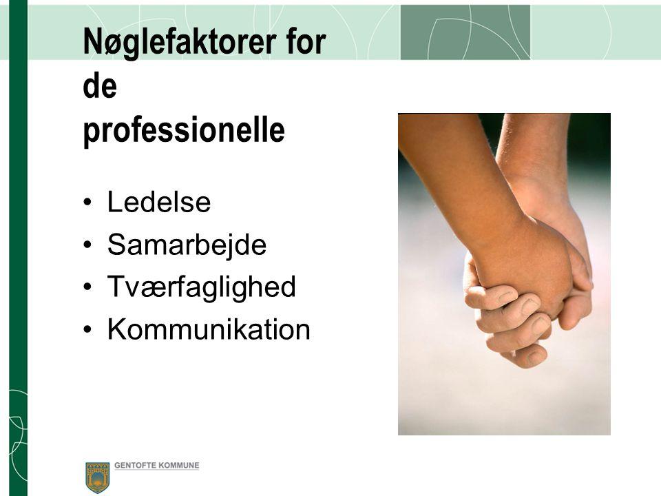 Nøglefaktorer for de professionelle