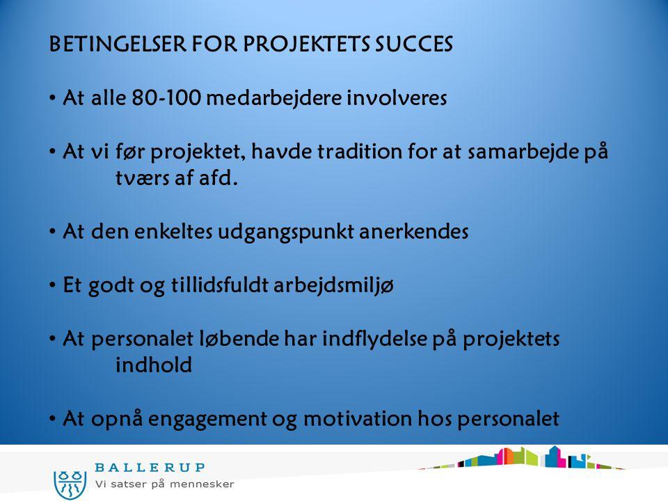 BETINGELSER FOR PROJEKTETS SUCCES