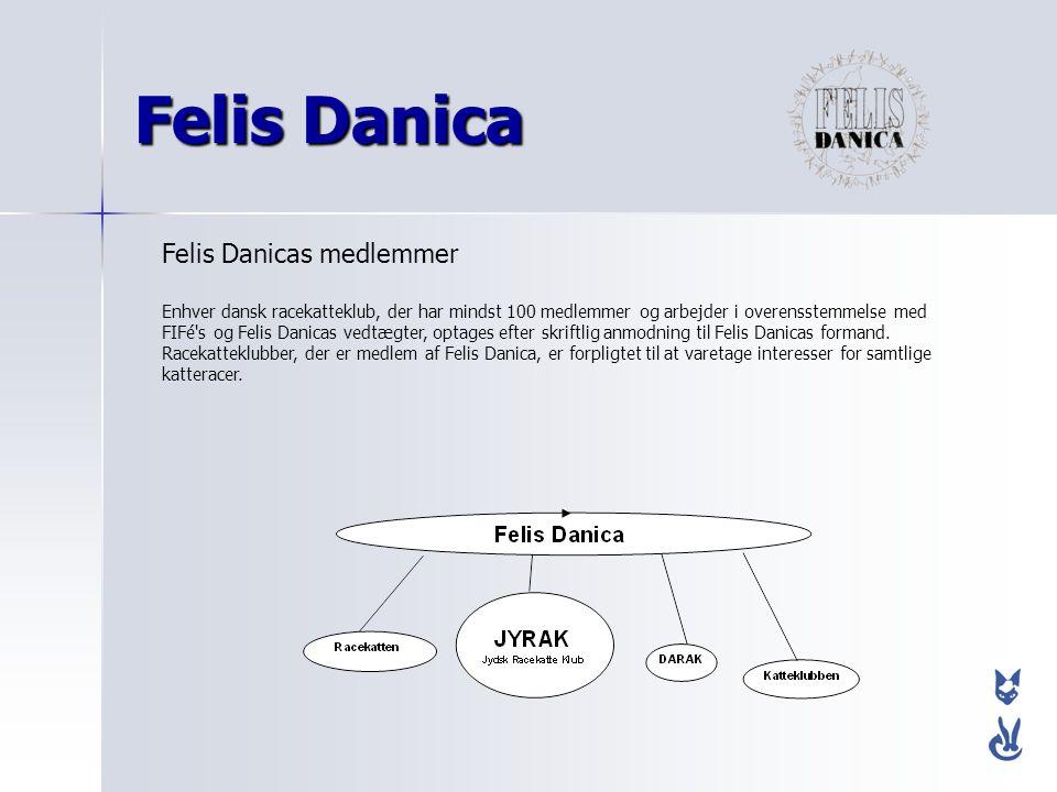 Felis Danica Felis Danicas medlemmer