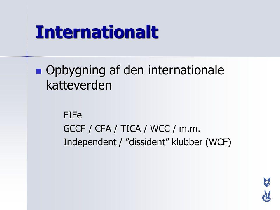 Internationalt Opbygning af den internationale katteverden FIFe