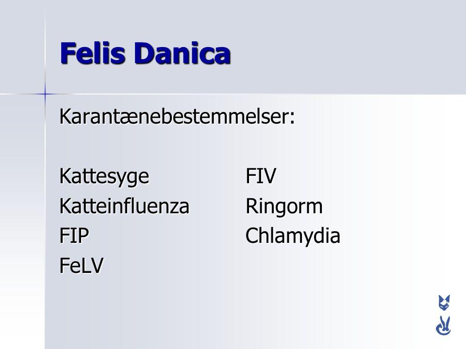 Felis Danica Karantænebestemmelser: Kattesyge FIV