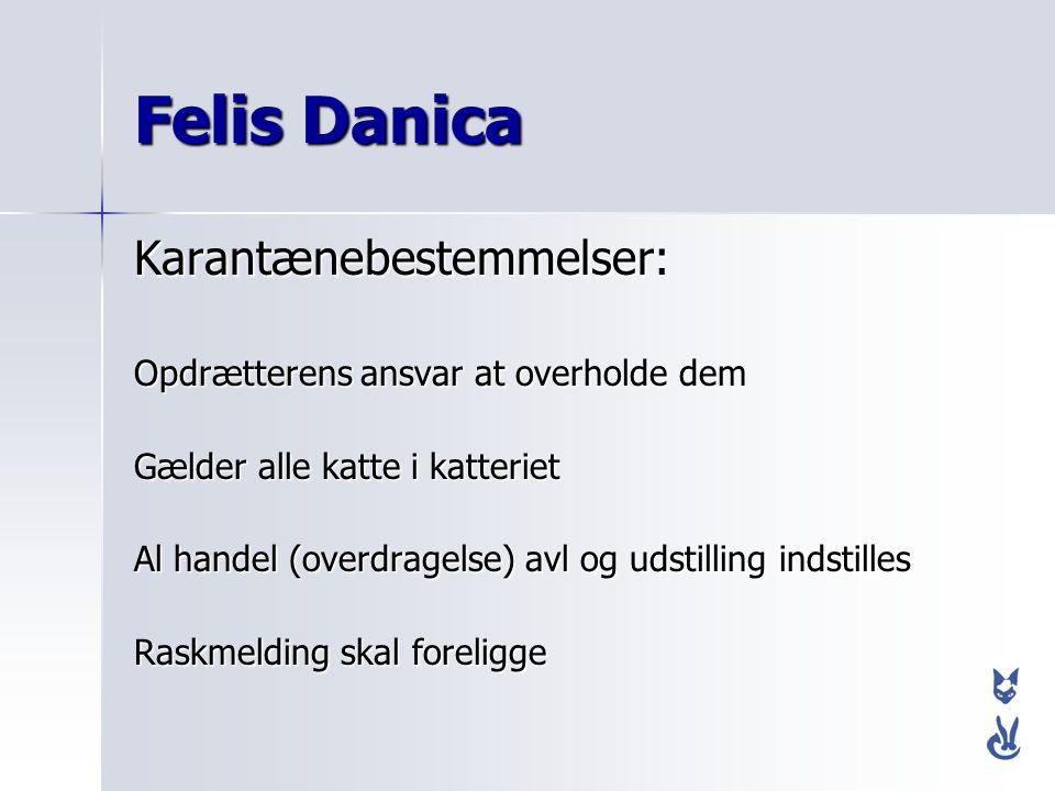 Felis Danica Karantænebestemmelser: