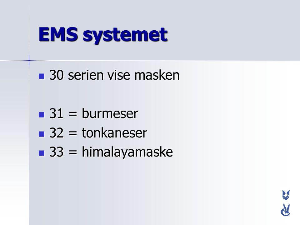 EMS systemet 30 serien vise masken 31 = burmeser 32 = tonkaneser