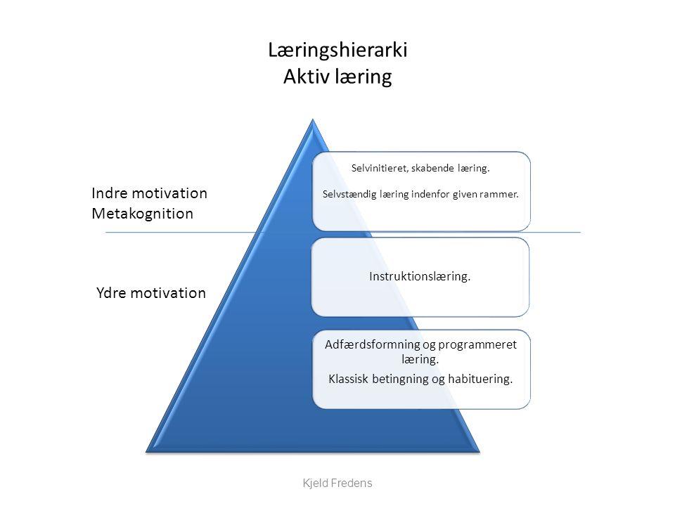 Læringshierarki Aktiv læring