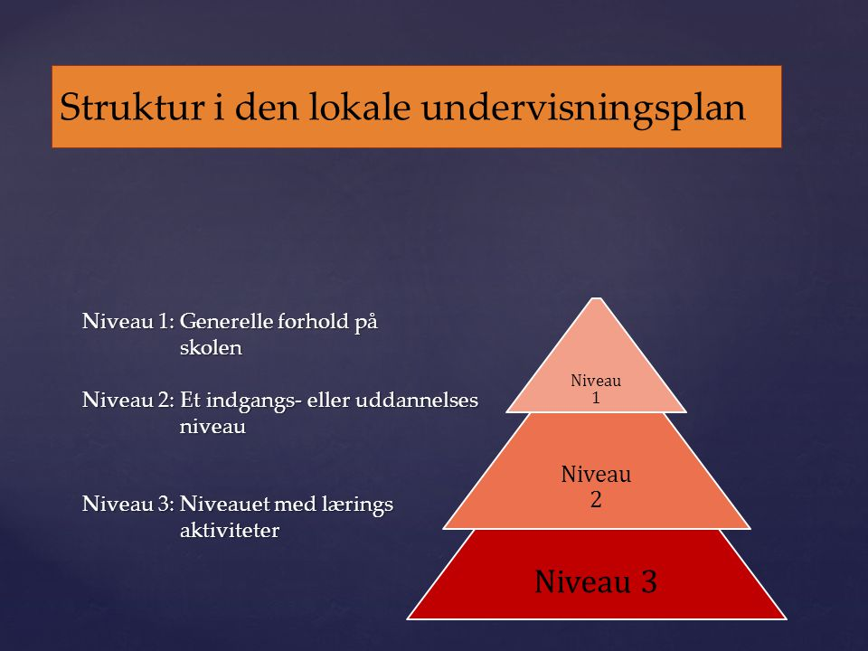 Struktur i den lokale undervisningsplan