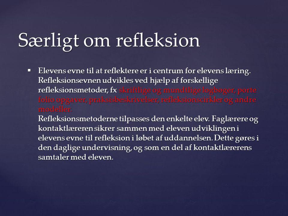 Særligt om refleksion